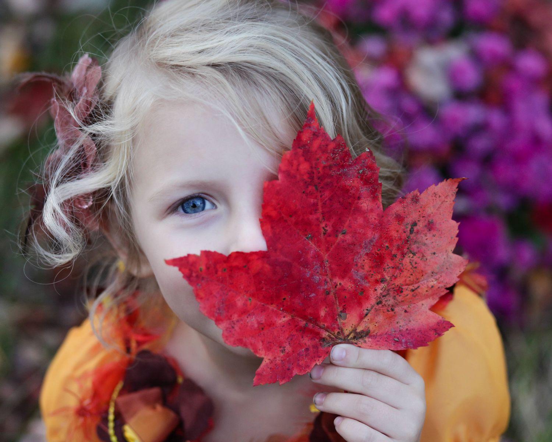Ein blondes Mädchen hält ein rotes Ahornblatt vor sein Gesicht.