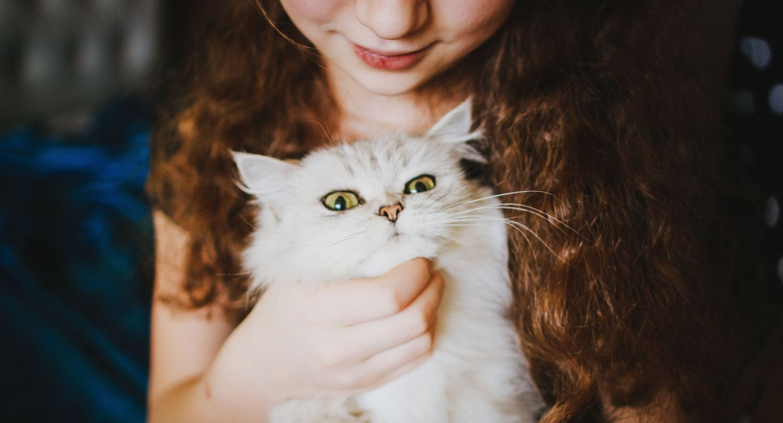 Ein Mädchen hält eine Perserkatze auf dem Arm. Hoffentlich hat es keine Tierhaarallergie.